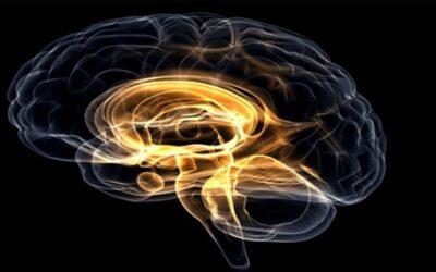 Κακόηθες σύνδρομο από Νευροληπτικά